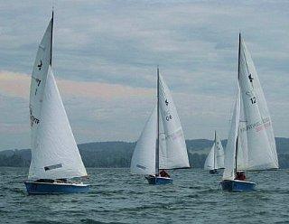 """Bis zu 14 baugleiche Segelboote des Typs """"Kielzugvogel"""" stehen Ihnen für Ihre individuelle Regatta am Mattsee zur Verfügung! © Steiner Nautic"""