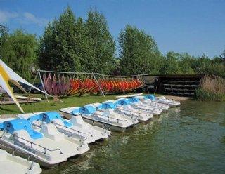 Die Surfschule Mattsee hält eine große Anzahl unterschiedlich dimensionierter Boards und Surfsegel für Sie bereit © Steiner Nautic